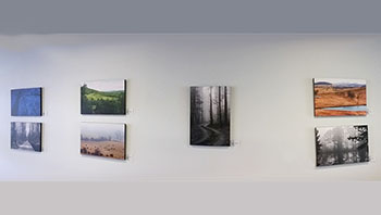 Purcellville photography Exhibit