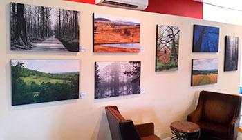 Vineyard photo show in Loudoun