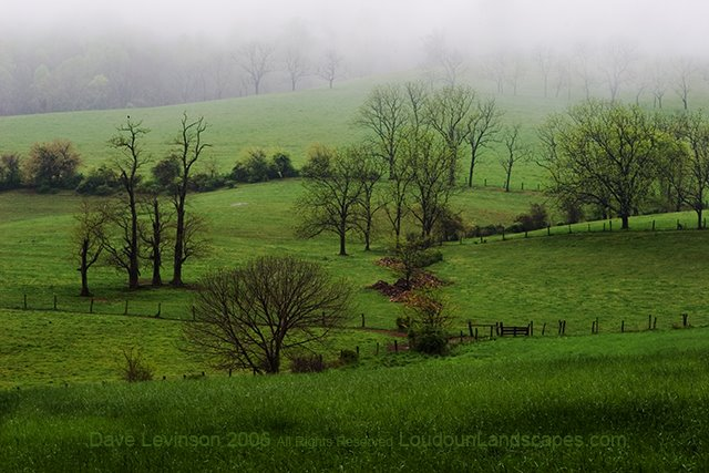 The Blue Ridge glows green with flowing tree lines.