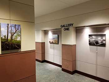 landscape photo show
